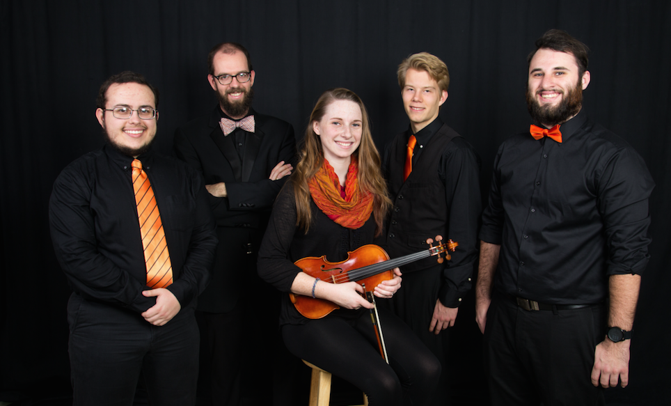 Kammerstreicher Ensemble