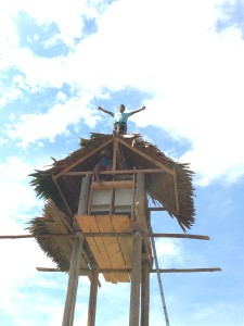 The newly constructed bat house in Peru.