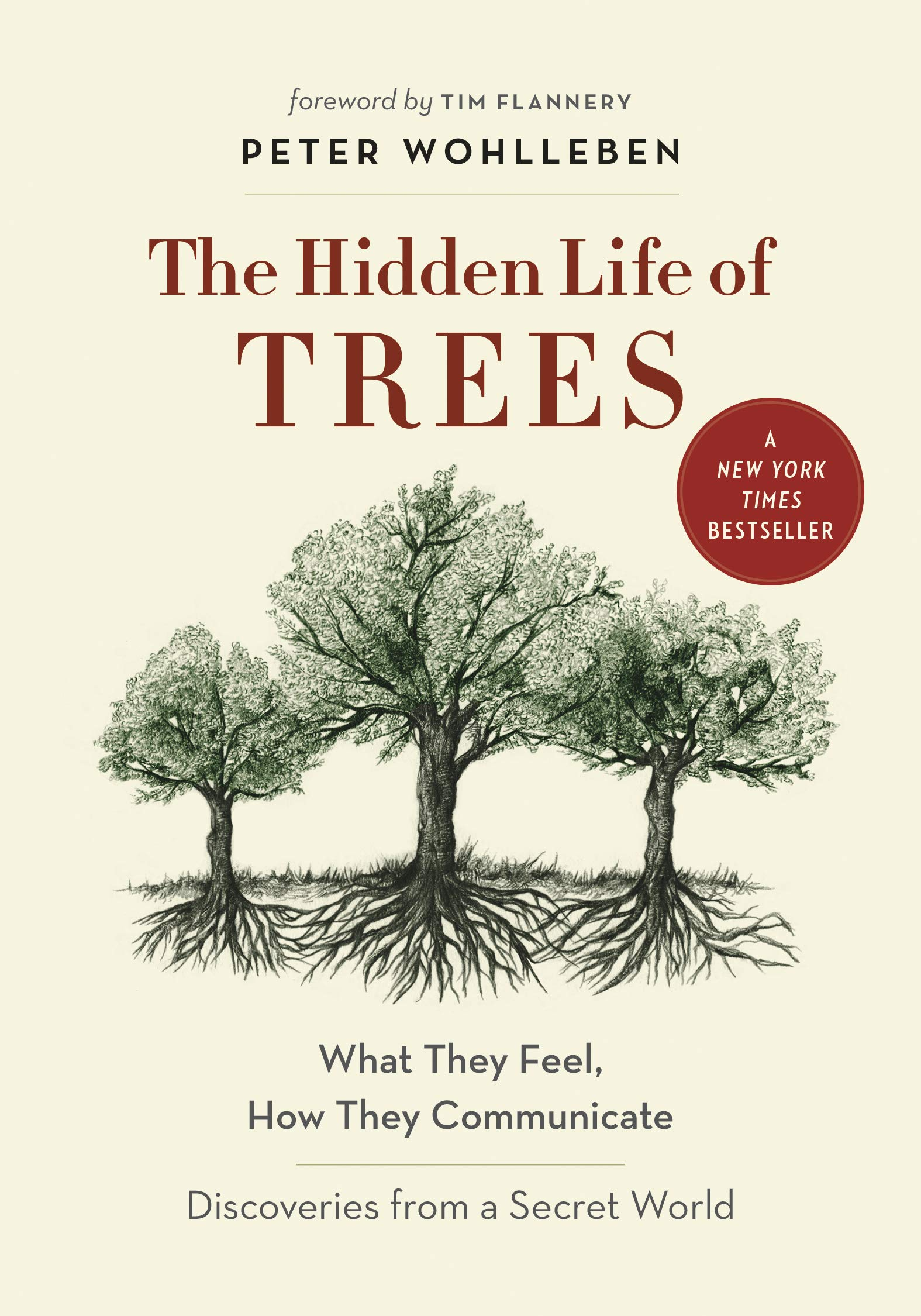 Hidden Life of Trees, book for Hearthside Project 2021