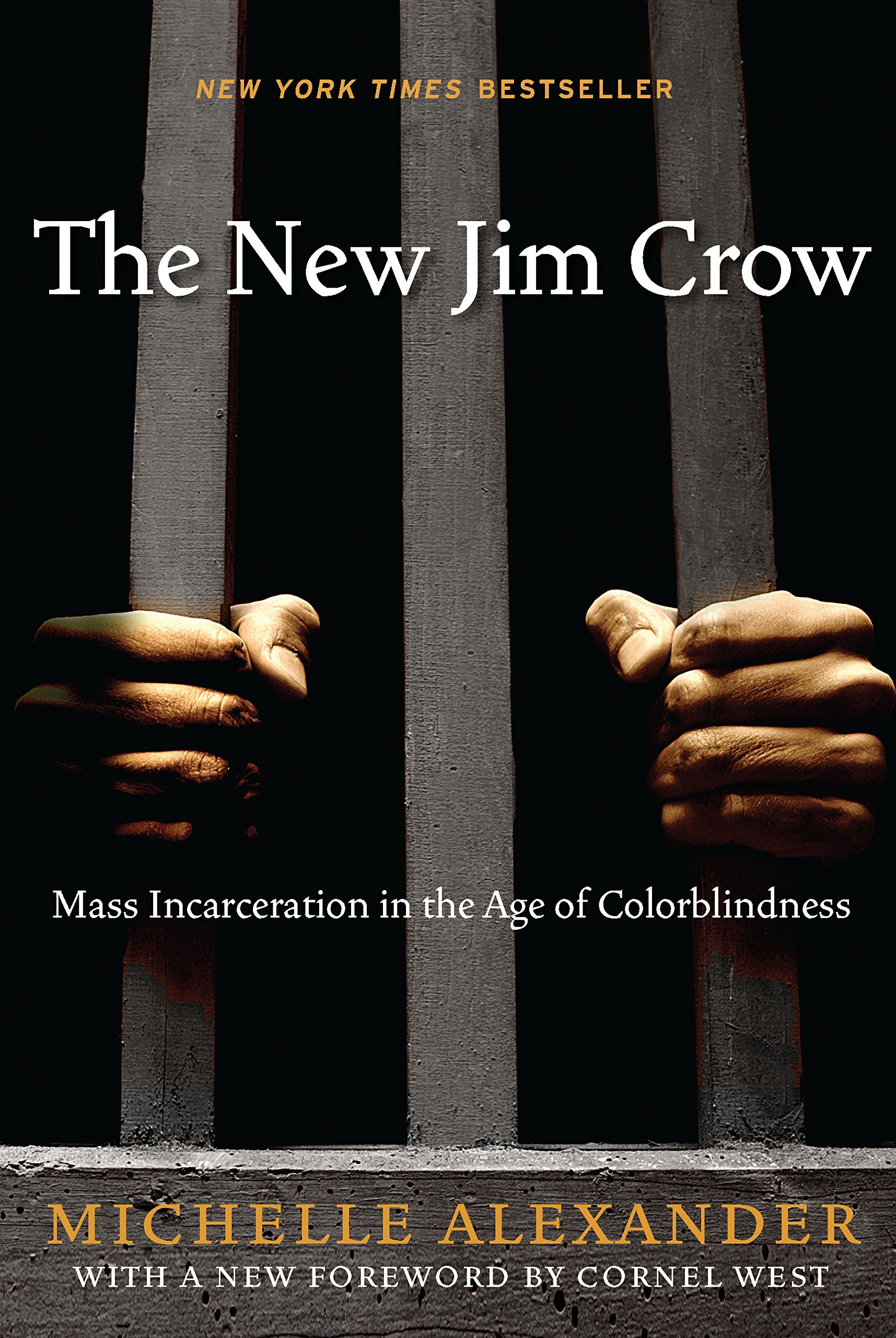 """The New Jim Crow: Mass Incarceration in the Age of Colorblindness"" book for Hearthside Project 2020"