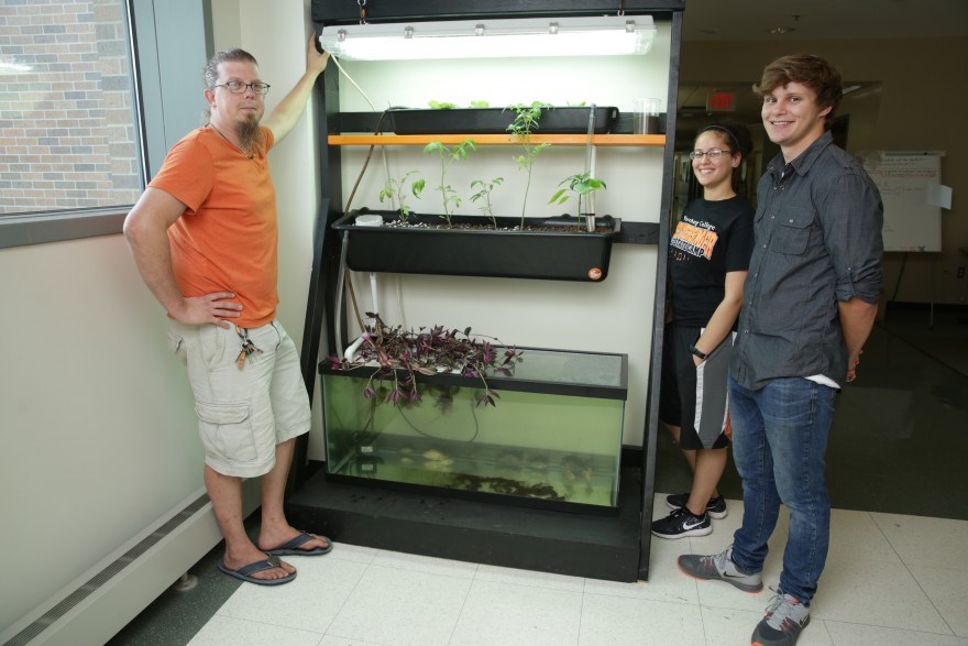 Professor Mike Bechtel, Angelina Carrasquillo '15, and Zach Pogorzelski '19 will showcase a smaller version of this aquaponics system at the Iowa State Fair on Aug. 19.
